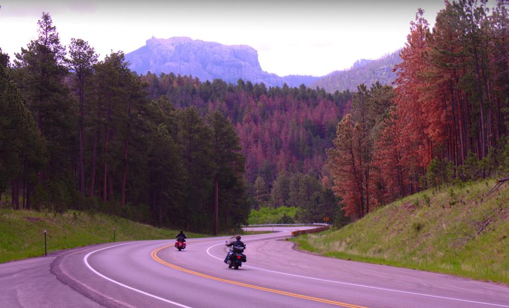 Bikers on road near Rushmore