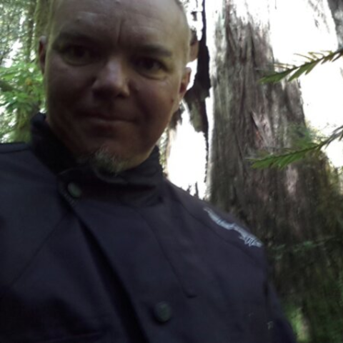 Redwood forests of northern California
