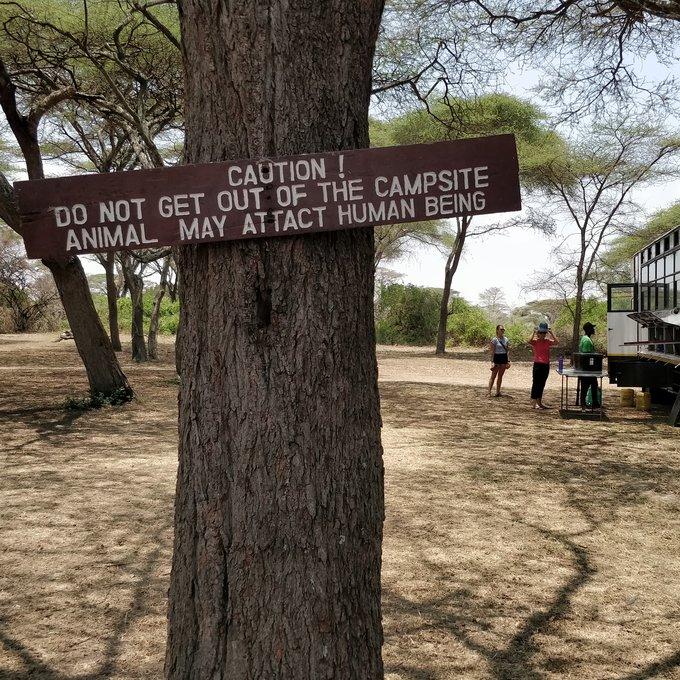 Day 4: Serengeti National Park